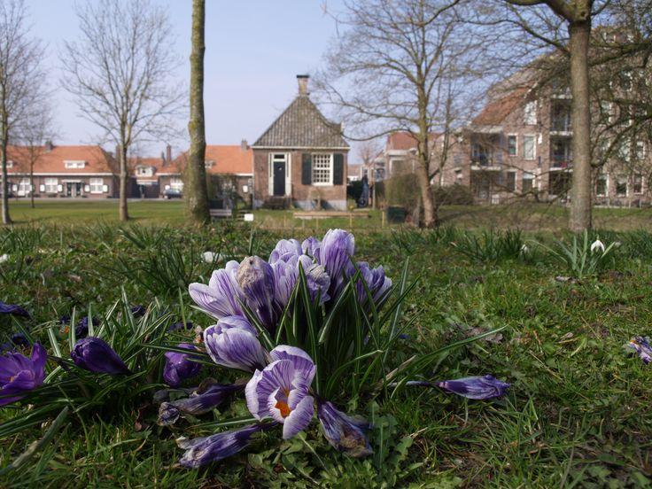 Vondelkade - Zwolle