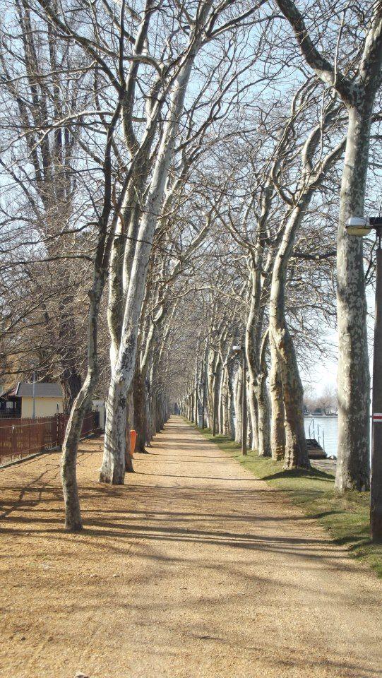 Kvassay promenade/ Kvassay sétány