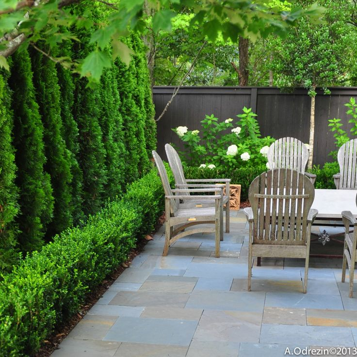 17 mejores ideas sobre arborvitae landscaping en pinterest for Terrasse english