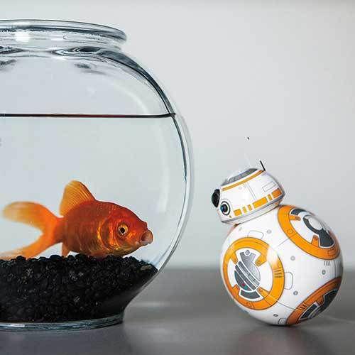 Star Wars Gadget: Per App ferngesteuerter BB-8 mag Fischis