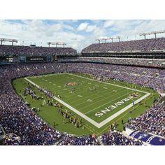 Artissimo Designs NFL Ravens Stadium Canvas, 22x28