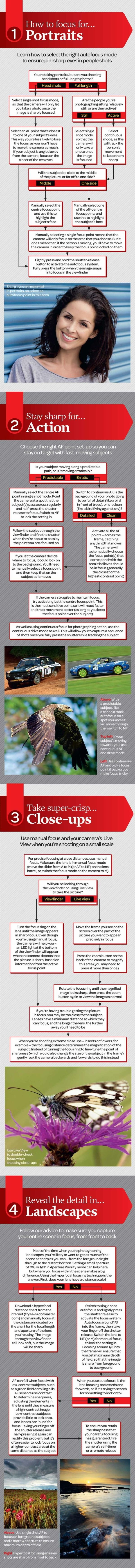 How to focus your camera for any subject or scene: free photography cheat sheet by herland