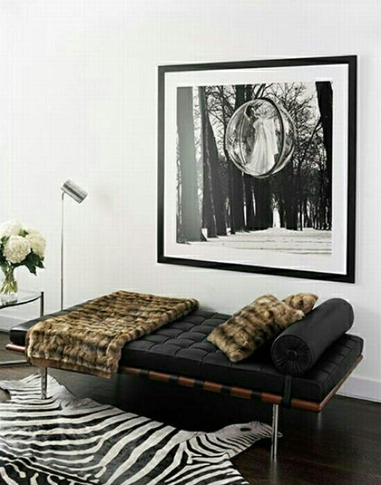 Divan. Zebra RugsZebra ArtDecorating Living RoomsDay ... Part 84