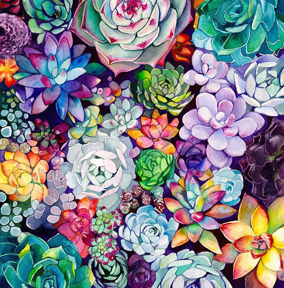 Succulent Garden –  Watercolor Painting – Floral – Bohemian Illustration – 11×11 Giclee Print – Home – Ina Hoffmann