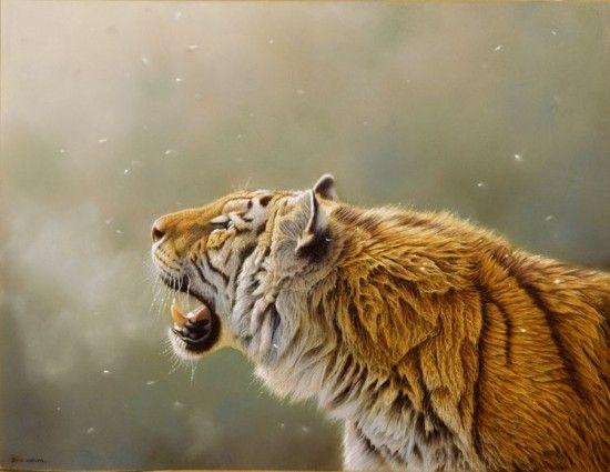 peintures de la vie sauvage de eric wilson tigre   Les peintures de la vie sauvage hyper réalistes de Eric Wilson   sauvage photo peinture n...