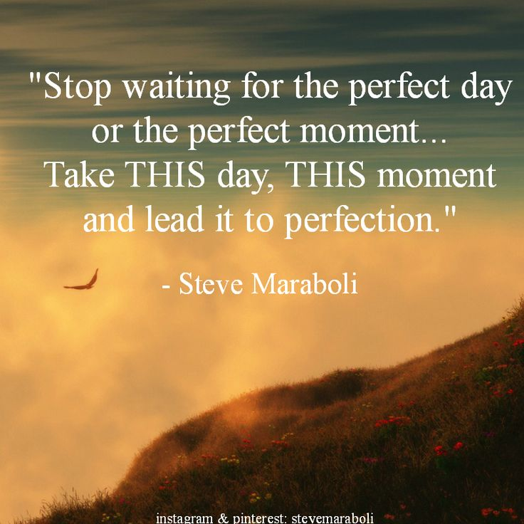"""Stop waiting for the perfect day or the perfect moment... Take THIS day, THIS moment and lead it to perfection."" - Steve Maraboli #quote"