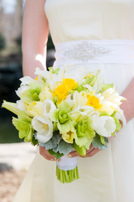 Beautiful spring bouquet with tulips, daffodils and gladiolus. #wedding #weddingbouquet #bride #bridalbouquet #white #yellow #green #tulip #daffodil #gladiolus #dustymiller