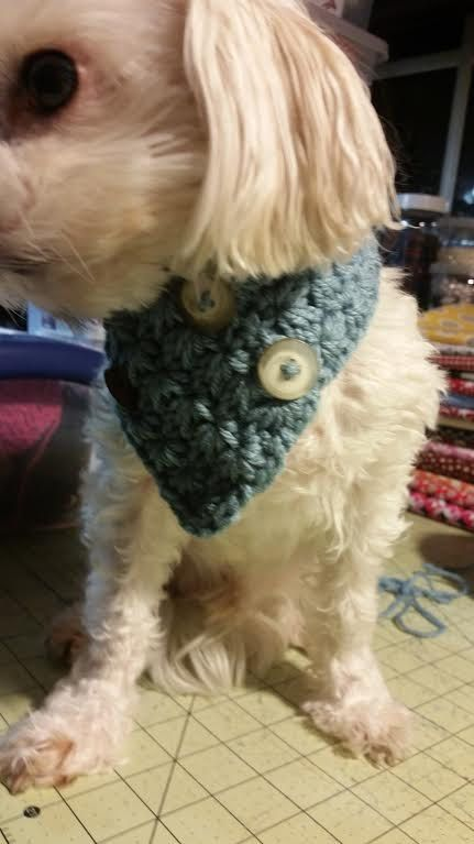 This scarf is great for any small dog. Its stretchy pattern.  This is suggested for the following toy breeds: Chihuahua, Yorkie, Poodle, Pomeranian, Mini Pin, all other small breeds  Hand crocheted with 100 % Acrylic yarn.  Size : XS : 2 high x 8~9 around neck S/M : 3 high x 9~10 around