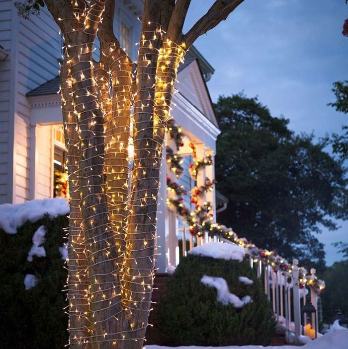 Outdoor LED String Lights for Trees 26