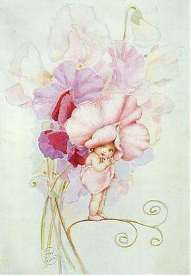 May Gibb Pink Rose Blossom Baby.