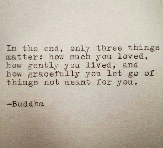 In the end, only three things matter: How much you loved, how gently you live, and how gracefully you let go of things not meant for you. - Buddha