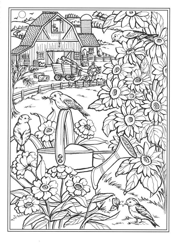 Https Www Christianbook Com Country Farm Scenes Coloring Book Teresa Goodridge 9780486836737 Pd 836 Coloring Pages Nature Dover Coloring Pages Coloring Books