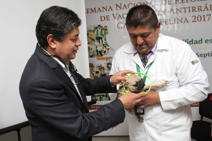 La meta es vacunar a más de 33 mil perros y gatos para que Tlaxcala se mantenga como área geográfica libre de transmisión de rabia canina. Contextos Region
