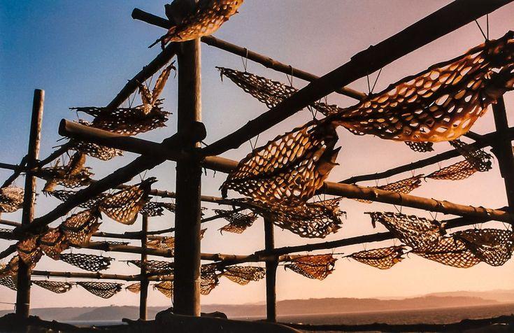 Dried eel #Galicia