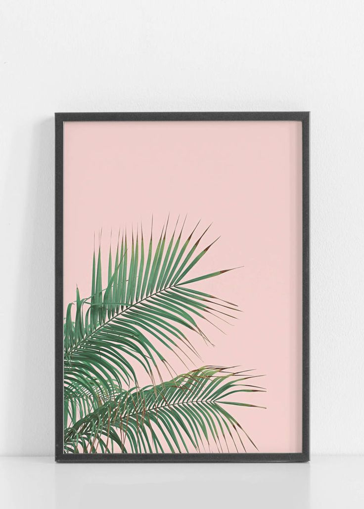 Excited to share the latest addition to my #etsy shop: Pink Palm Leaf,Palm Print,Palm Leaves,Tropical print,Tropical Poster,Tropical Decor,Palm Decor,Palm Photography,Pink,Palms,Palm Leaf,Posters http://etsy.me/2nDTalt #art #print #giclee #green #housewarming #pink #pi