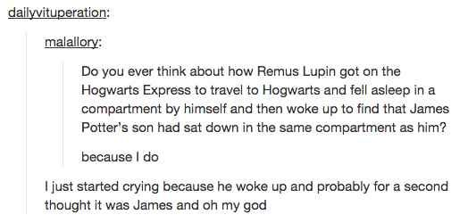 Tears for Fred and George and Remus and Sirius and Harry trying to move on.