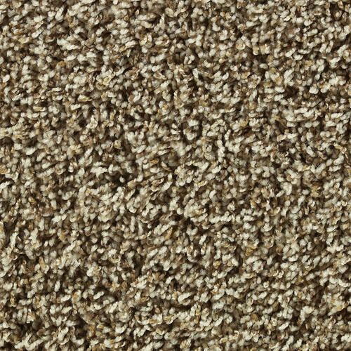 Choosing Carpet Color | Shaw Color Debut Frieze Carpet 12 Ft Wide at Menards