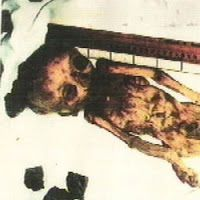 Ufo Evidence: O Roswell Chinês