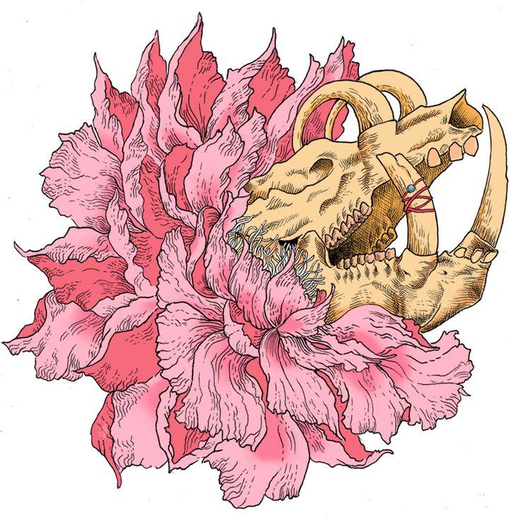 Blooming Illustration