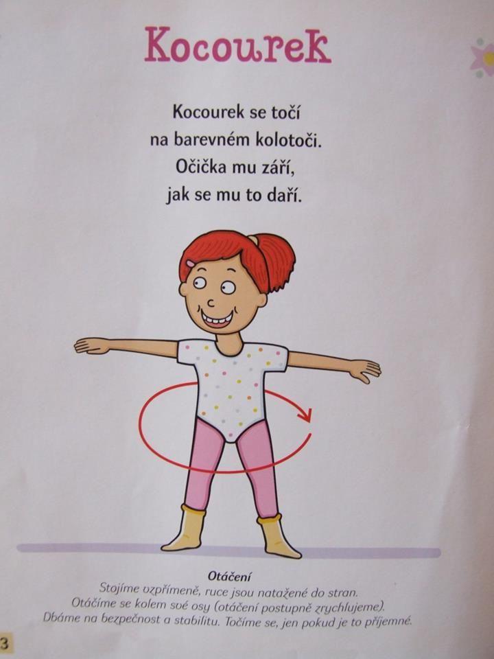 kocourek
