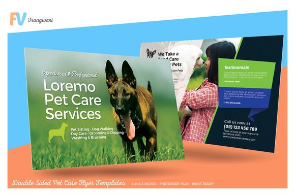 Double Sided Pet Care Flyer Template by frangivani on @creativemarket