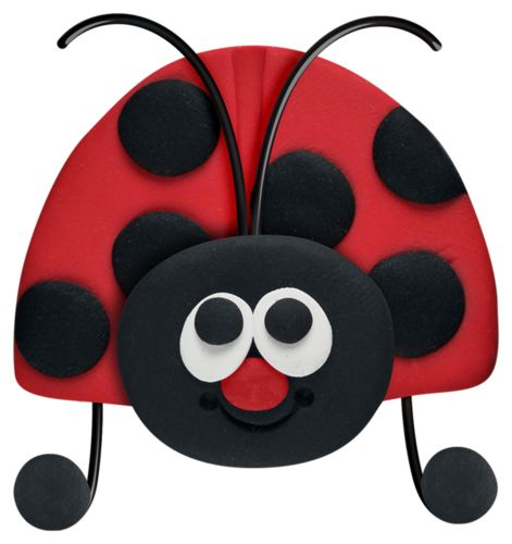 ladybug_front.png
