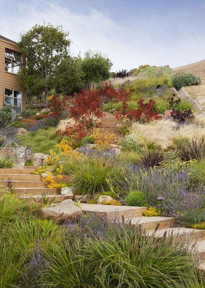 Plant the hillside. Who says you can't? Who says you have to have retaining walls? Choose plants with fibrous root zones or that are aggressive spreaders, like native sedge, and your soil won't go anywhere. In the end you'll have a more interesting landscape.