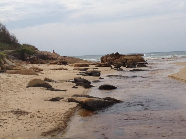 South West Rocks NSW- A beautiful picnic spot.