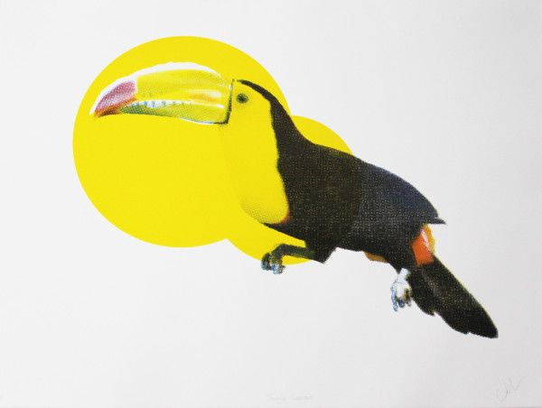 Victoria Langdon - Jungle Toucan
