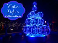 Winter Lights display at NC Arboretum in Asheville, North Carolina. #NCWinterLights