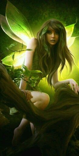 Green Fairy                                                                                                                                                     More