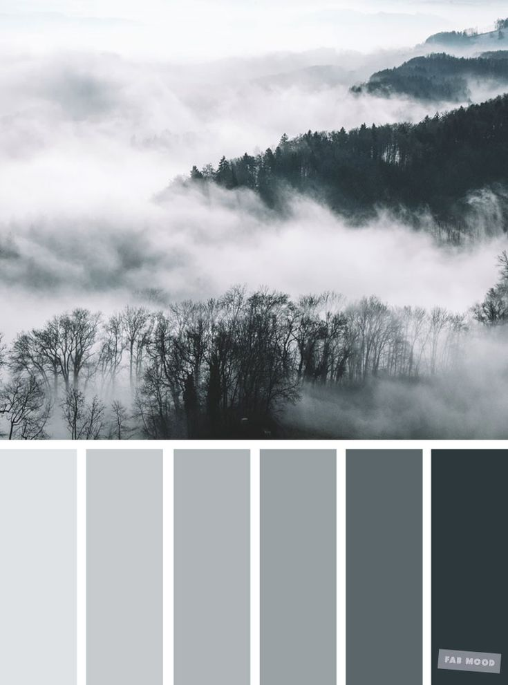 Smokey grey color palette #color #colorpalette #grey