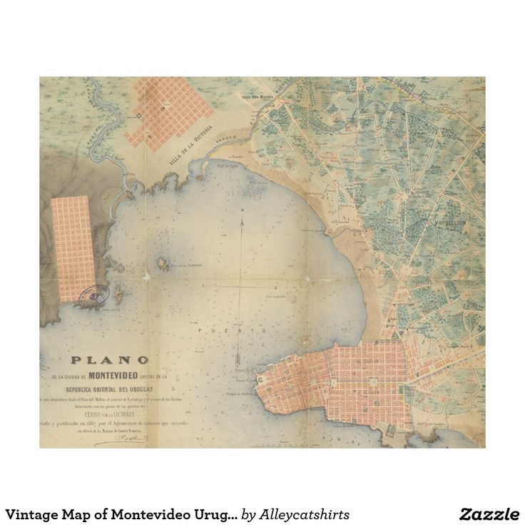 Vintage Map of Montevideo Uruguay (1867) Fleece Blanket