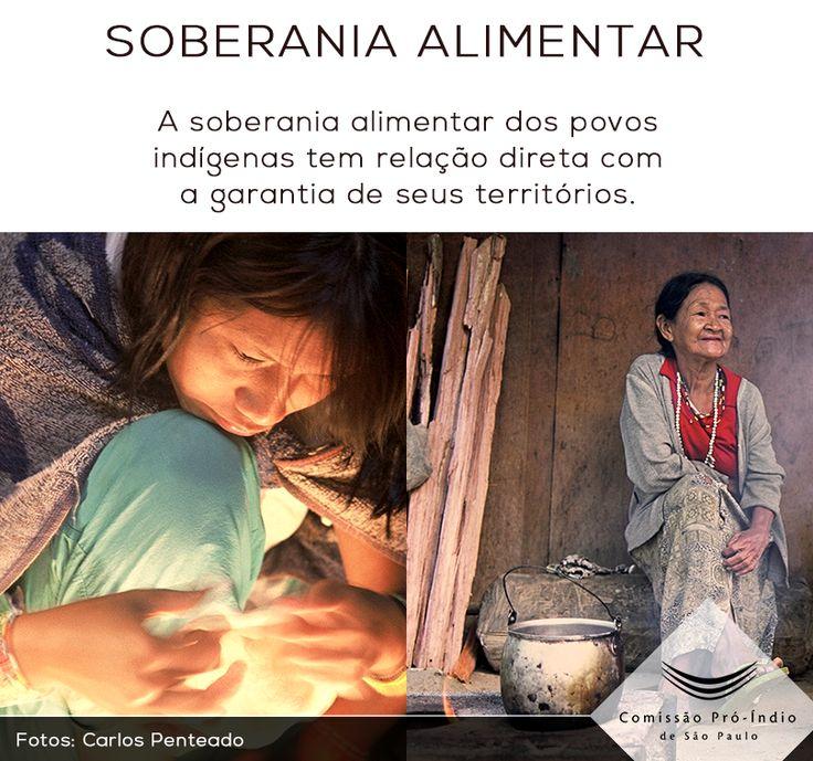 """""""Sem a questão territorial, que é uma questão fundante, é muito difícil falar de soberania alimentar indígena"""", Maria Emília Pacheco, presidente do Consea - Conselho Nacional de Segurança Alimentar.  Veja aqui matéria completa da Comissão Pró-Índio de São Paulo: http://bit.ly/1htD85O"""