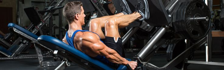 In the article below we will discuss the legs, their function, and some exercises for them. This beginner's guide also includes 5 workout programs to help you build massive legs. Try it now!