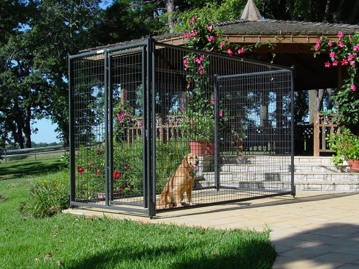 Dog Kennel - Our 6' tall kennels are ideal for the confinement of medium to large-sized dogs.
