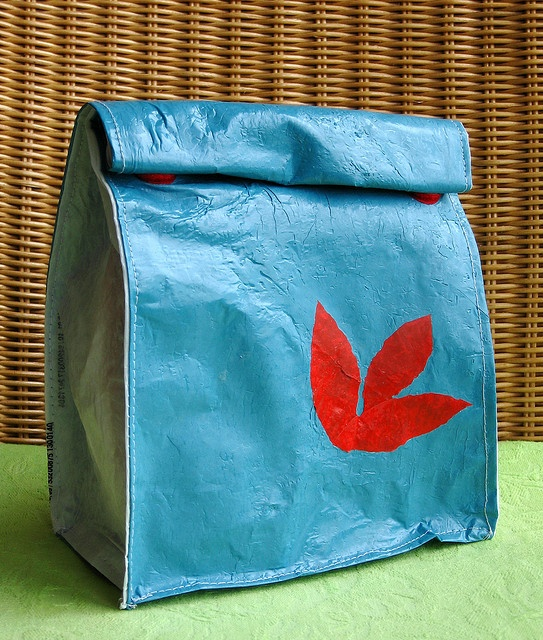 Fused plastic lunch bag