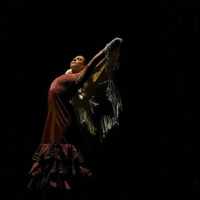 Feliz día del fotógrafo en Colombia. Gracias por esta linda foto a @orianauta  #manton #diadelfotografo #colombiaflamenca - - - #carmentortflamenco #flamenco #bailaora #flamenca #baileflamenco #flamencodance #flamencodancer #flamencodancing #baile #dance #dancer #danza #flamencogirl #flamencoteacher #followme #flamencophotography #flamencocolombia #flamencobogota #flamencocartagena #flamencoencali #flamencomedellin #flamencobarranquilla #flamencospain #flamencomexico #colombiaflamenca…