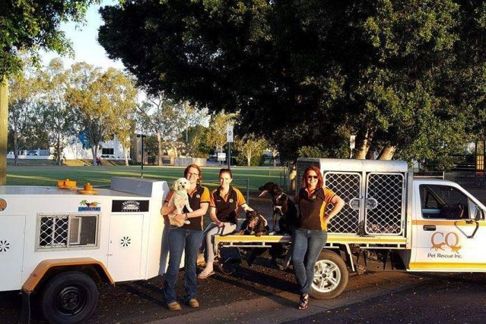 CQ Pet Rescue sets off from Emerald to Brisbane to deliver rescue   animals for rehoming.