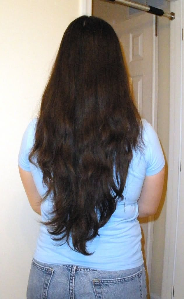 Long Hair Layers Back View V