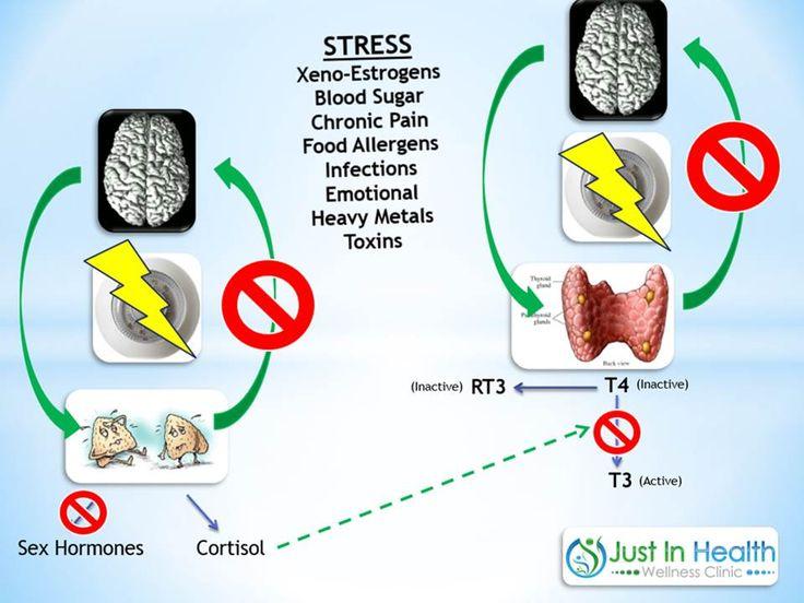 die besten 25+ adrenal fatigue treatment ideen auf pinterest
