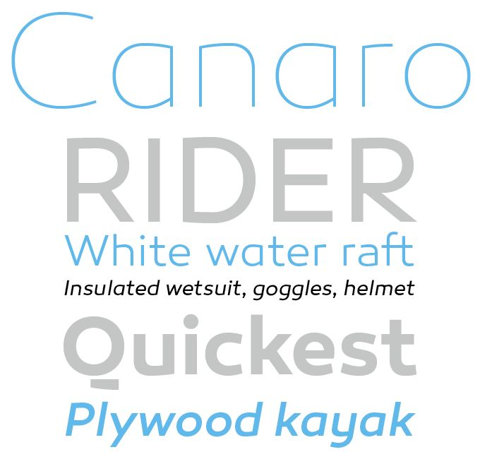 Canaro is the latest in Rene Bieder's impressive series of successful new font families. #fonts #type