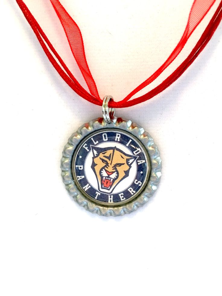 Florida PANTHERS Hockey Organza Necklace * by ZZsTeamTime on Etsy