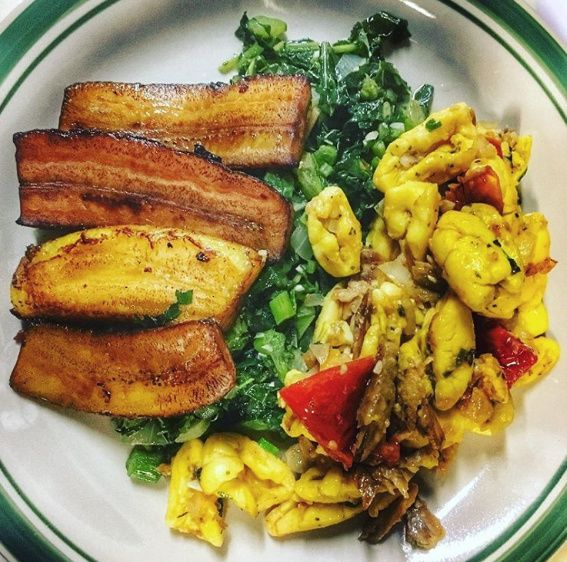 The 25 best saltfish and ackee ideas on pinterest for Salt fish ackee