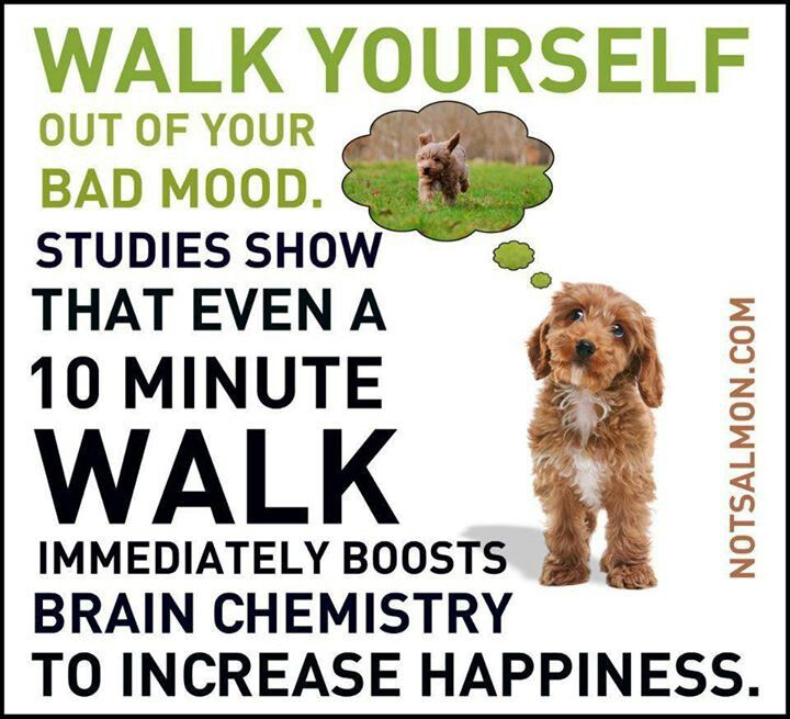 Reminder: Walk yourself out of a bad mood.