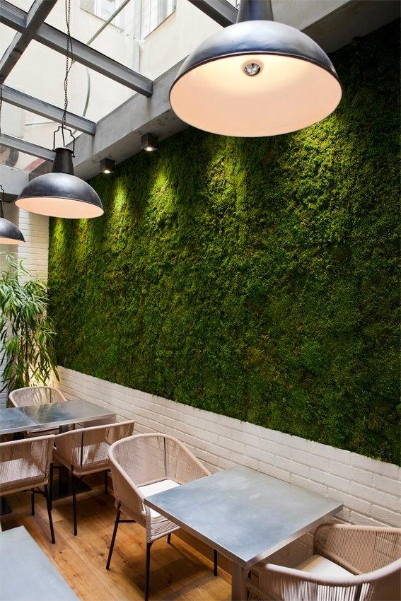 A lovely vegetal wall Edulis Restaurant Madrid