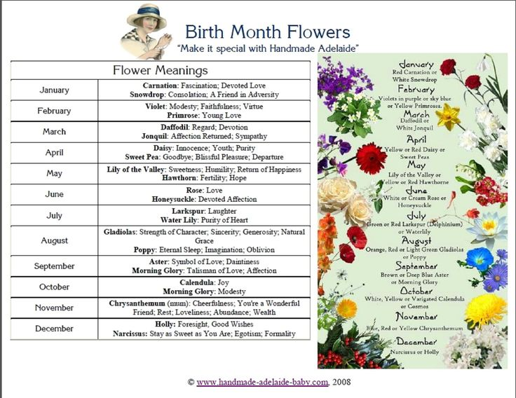 flowers and their meanings by month