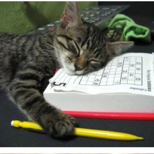 I always fall asleep after a good game of sodoku.(: