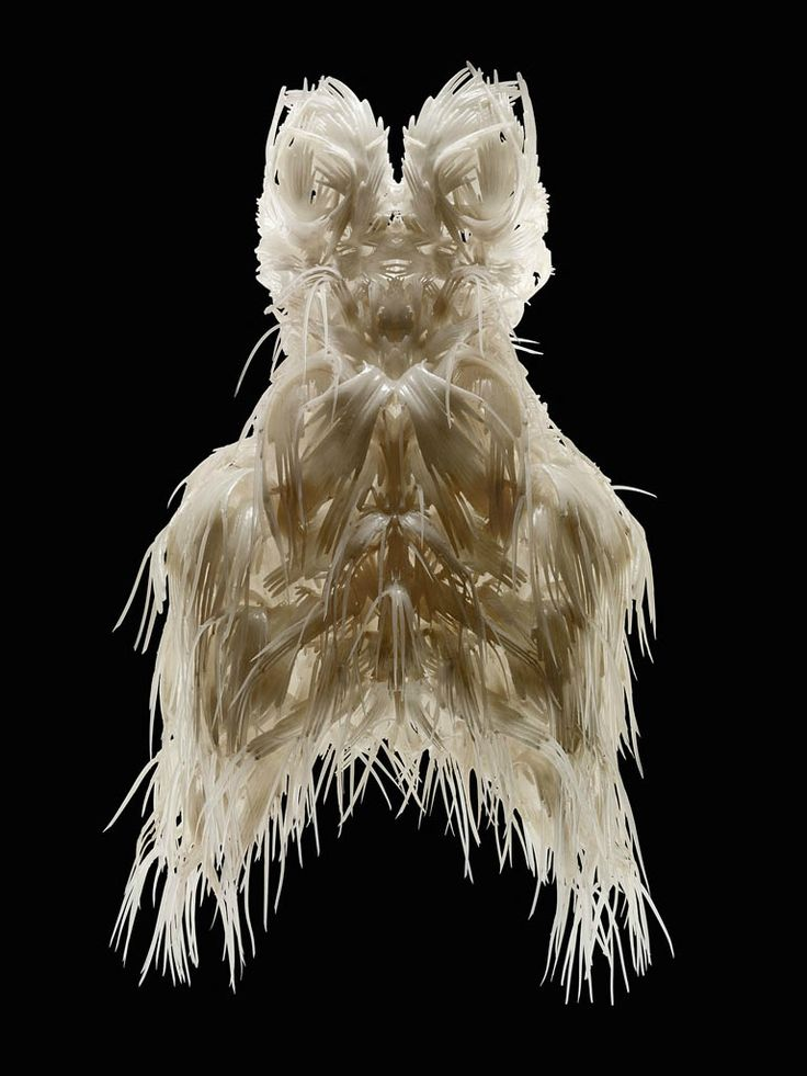 Iris van Herpen (Dutch, born 1984), Biopiracy, Dress, March 2014. In collaboration with Julia Koerner and Materialise. 3-D-printed thermoplastic polyurethane 92A-1 with silicone coating. Collection of Phoenix Art Museum.