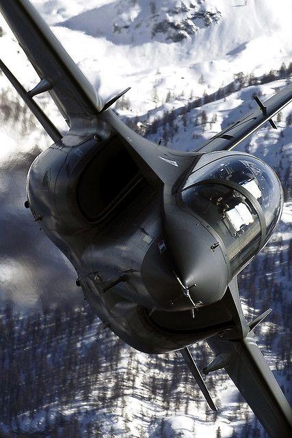 El Alenia Aermacchi M-346 Master es un avión de entrenamiento transónica militar. El diseño del avión se basa en el Yak-130, desarrollado por Yakovlev y Aermacchi como una empresa conjunta